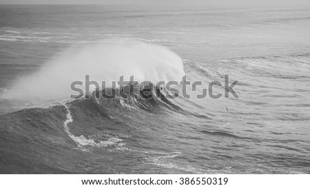 wave breaking on the portuguese west coast