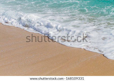Wave of the sea on the sandy beach