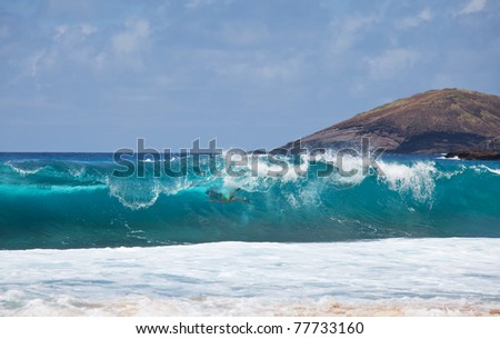 wave on Hawaii - stock photo