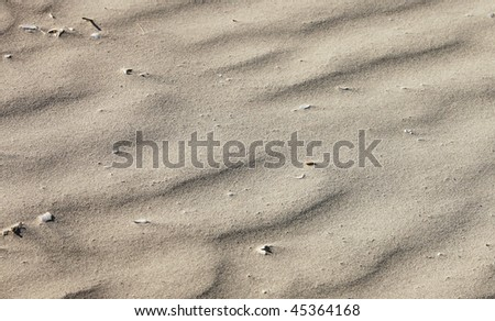 Wave patterns in the Beach Sand - abstract background