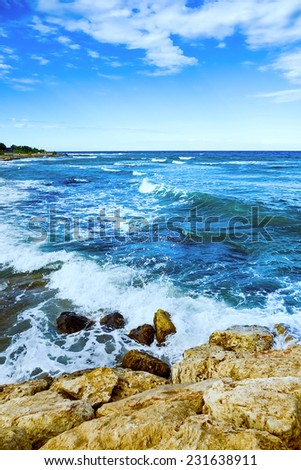 waves on the sea landscape on a background of blue sky with clouds