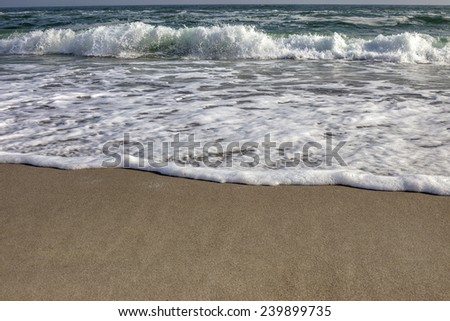 Waves on the tropical sandy beach by the sea