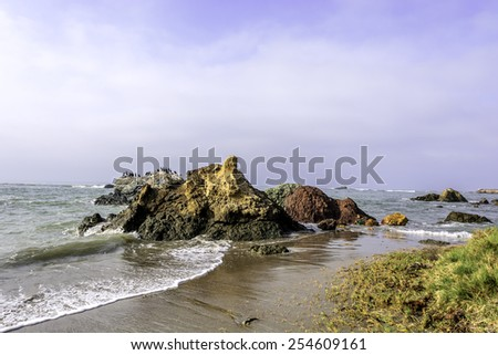 Waves splashing on a painted rocky beach with sea grass along the Big Sur coastline, on the California Central Coast, near Cambria CA. - stock photo