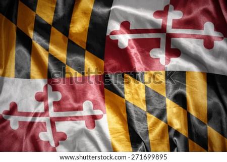 waving and shining maryland state flag - stock photo