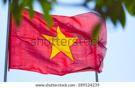 Waving flag of Vietnam on the wind - stock photo