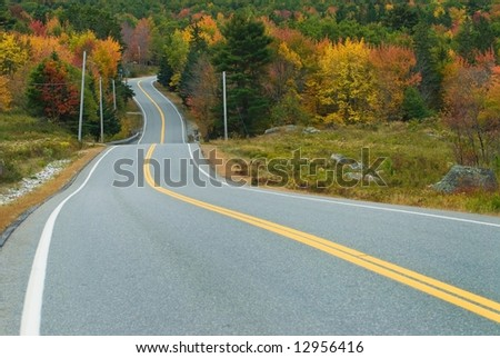 Waving highway surrounded by the fall forest - stock photo