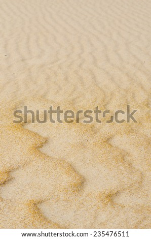 Wavy and rippled lines and curves on sandy desert or beach dune, remote and barren, natural design backdrop, background or wallpaper.