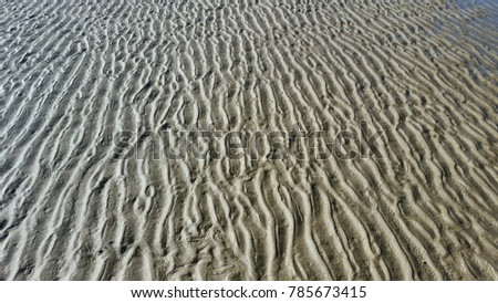 Wavy sand texture of the sea at low tide