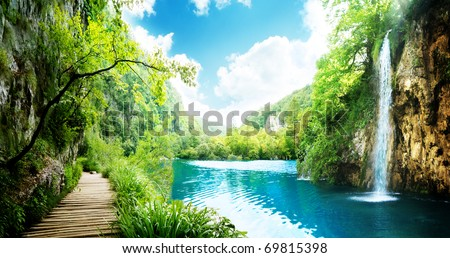 way in deep forest of Croatia - stock photo