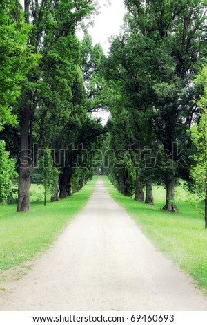 way in summer green park - stock photo