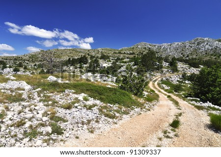 Way in The National park Biokovo - Croatia. - stock photo