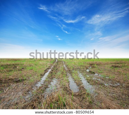 Way soil mud background green grass blue sky cloudy