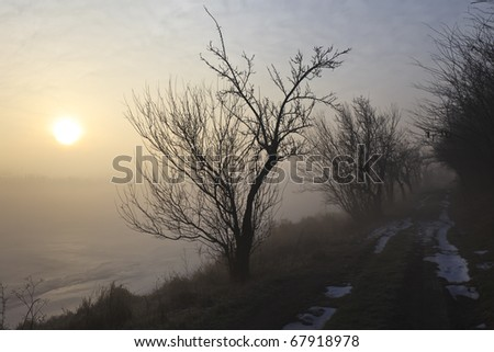 way through a mysterious fog at sunrise - stock photo