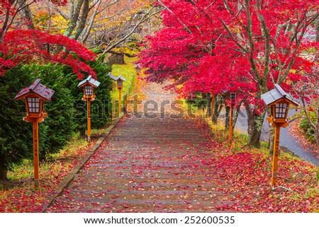 Way to Chureito Pagoda in autumn, Fujiyoshida, Japan - stock photo