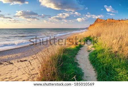Way to the beach. Nature composition. - stock photo
