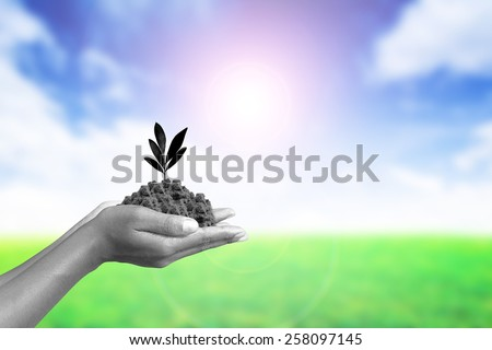 We love the world of ideas, man planted a tree in the hands
