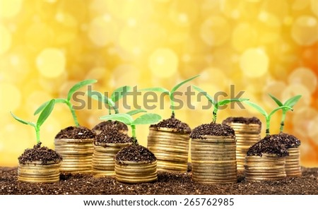 Wealth. Trees growing on pile of coins money over green and blue sky background - stock photo