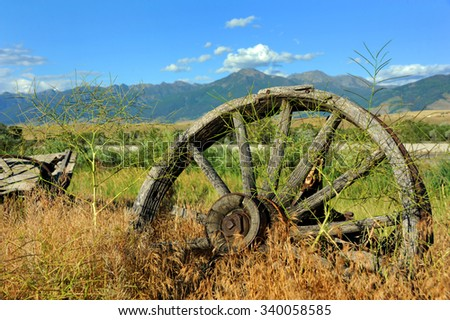 Weathered and rusting wagon wheel sits overgrown by weeds in Paradise Valley, Montana. - stock photo