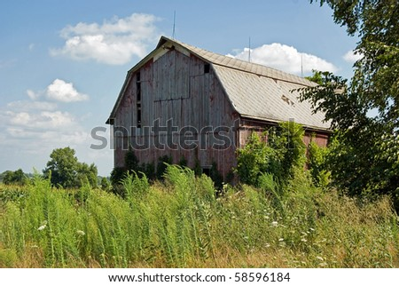 weathered old barn in summer - stock photo