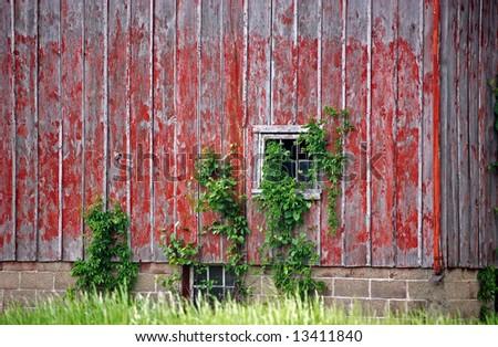 weathered old barn siding - stock photo