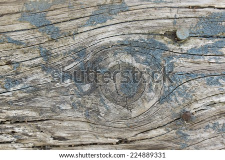 weathered paint wooden background - stock photo