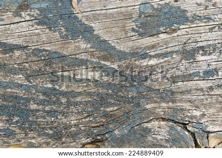 weathered paint wooden background