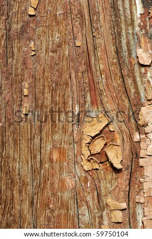 Weathered painted cracked obsolete wooden rough plank