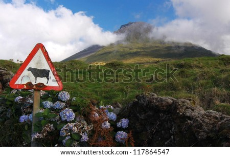 Weathered sign in front of volcano Pico - Pico island, Azores Islands