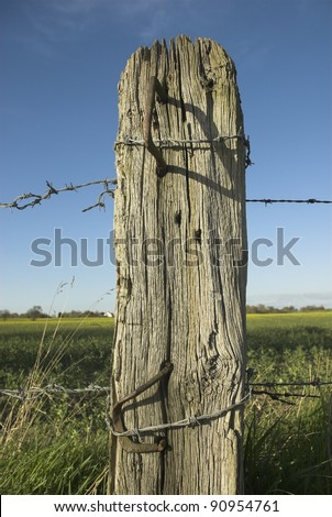 Weathered Wooden Post With Barbed Wire - stock photo