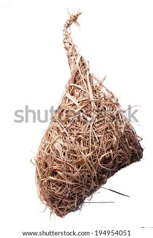 weaver bird nest isolated on white background - stock photo