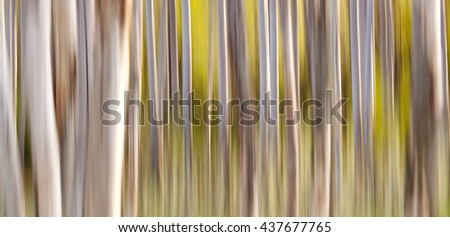 Website banner of abstract nature autumn forest - stock photo