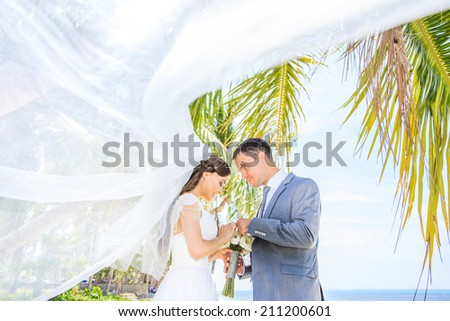 Wedding. Beautiful couple on the beach