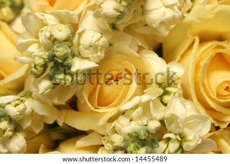 wedding bouquet detail - stock photo