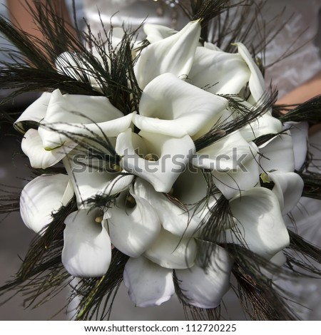 Wedding bouquet from white callas and peacock feathers - stock photo
