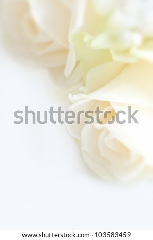 wedding bouquet, wedding background - stock photo