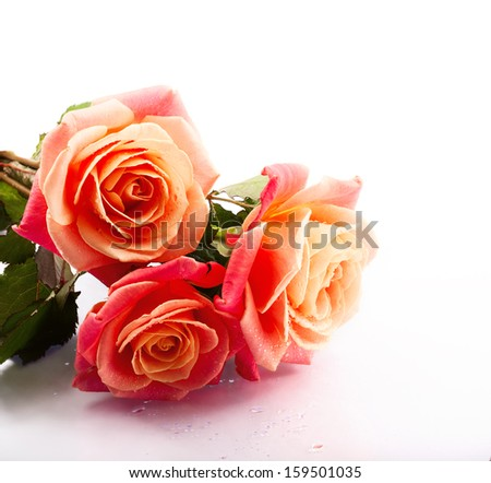 wedding bouquet with rose bush, postcard design - stock photo