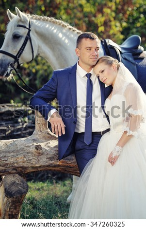 Wedding. Bride and groom with white horse - stock photo