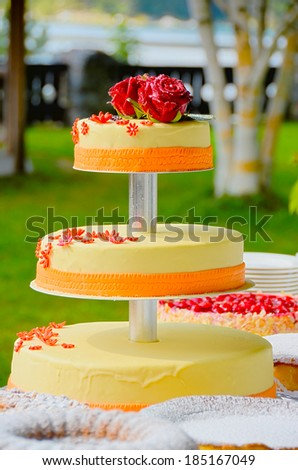Wedding cake in a park - stock photo