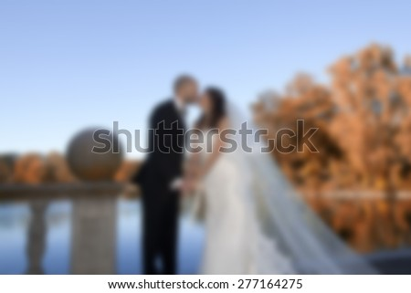 wedding couple kissing in the park  ,blurred wedding and love background - stock photo