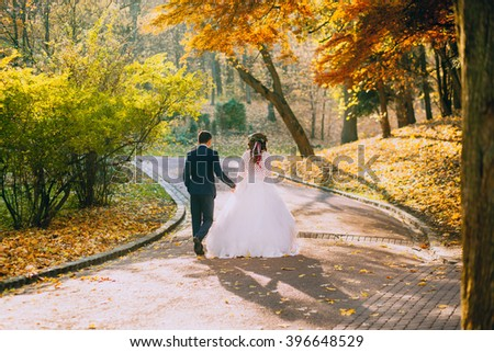 wedding couple walking at the park - stock photo