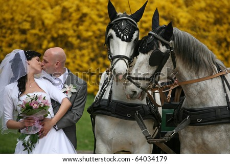 wedding couple with horses - stock photo
