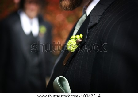 Wedding day groom and his boutonniere - stock photo