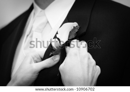 Wedding day groom and his boutonniere being pined - stock photo