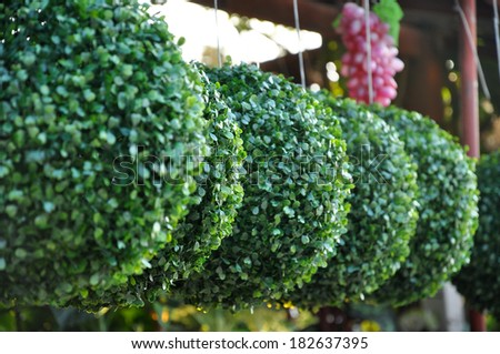 Wedding Decoration Artificial Plastic Boxwood Ball hanging onto the rail. - stock photo