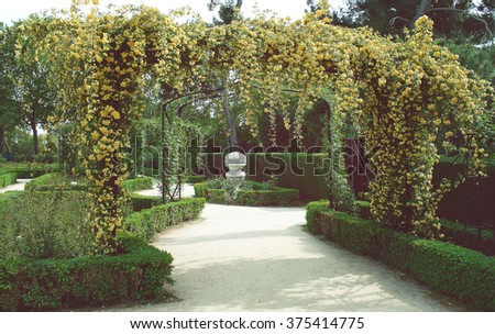 Wedding decoration floral arch of roses - stock photo