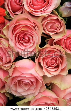 Wedding decorations: group of pink roses