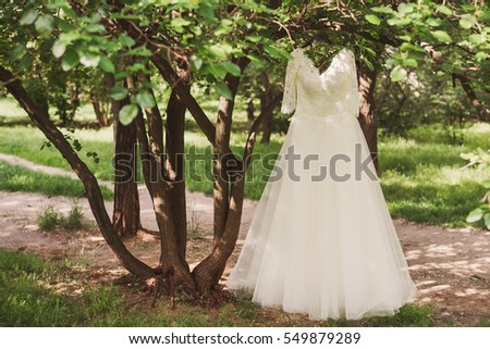 Wedding Fashion White Lace Dress Hang On The Tree Branch In Garden