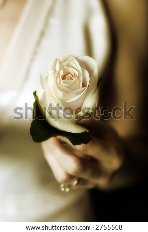 Wedding  - flowers - stock photo