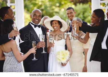Wedding guests toasting bride and groom - stock photo