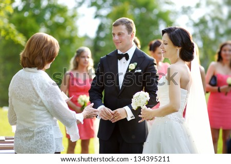 Wedding guests toasting happy bride and groom - stock photo
